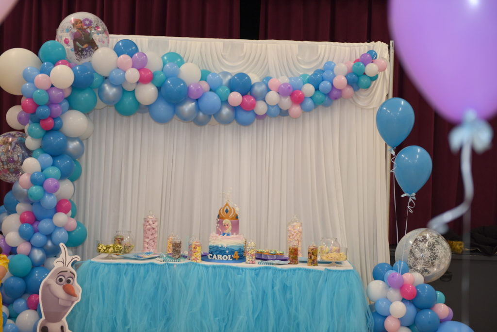 Frozen Kids Party (8)